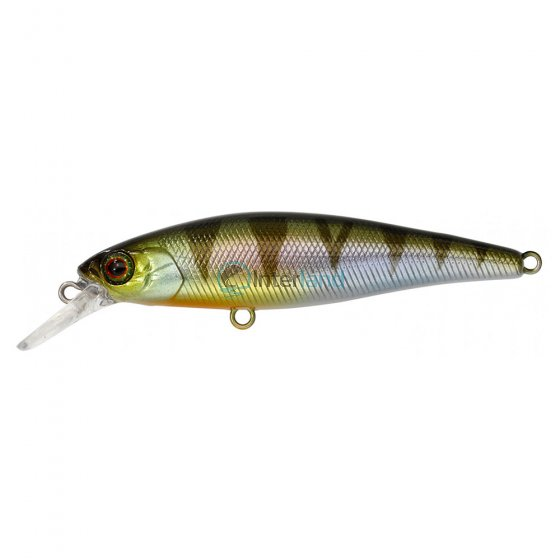 ILL - Vob. SQUAD MINNOW 65 S Perch
