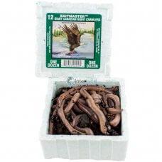 BAI - Gliste za ribolov - kutija 12 kom